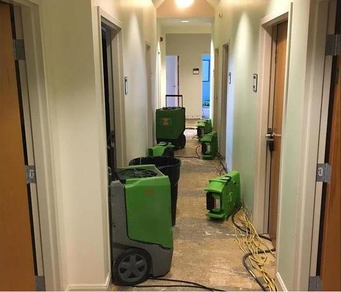 Mold Remediation When sump pumps fail at a local university