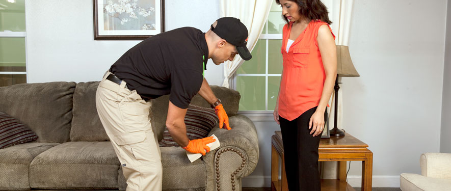 Lexington, KY carpet upholstery cleaning